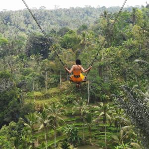 Waterfall Bali Jungle Swing And Ubud Tour Package