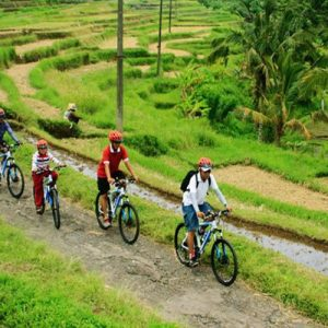 Ubud Village Cycling, Monkey Forest And Tegenungan Waterfall